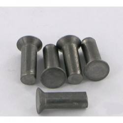 Paquet de 50 rivets 5,25x13