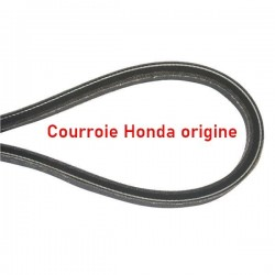 Courroie HONDA 22431-VE0-L02