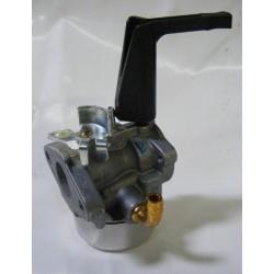Carburateur Briggs et Stratton 495459